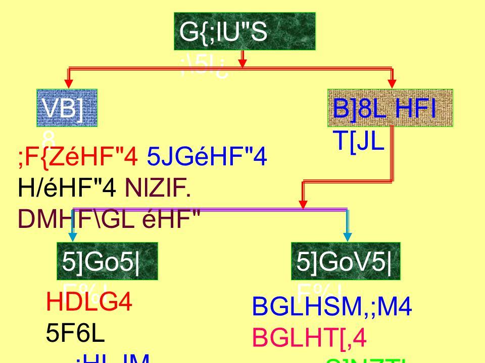 G{;lU S ;\5l¿ VB]8 B]8L HFI T[JL 5]Go5|F%I 5]GoV5|F%I